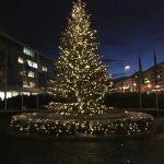 Christmas Tree out the front of the hotel