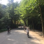 Biking trail that circles perimeter of park