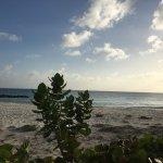 Photo of Maxwell Beach