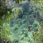 Photo de Kep National Park