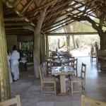 Kapama Southern Camp-bild