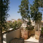 an aspect of the roof terrace