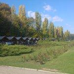 Foto di Herastrau Park