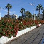 Photo de Puente de las Flores