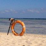Photo de Three Corners Fayrouz Plaza Beach Resort