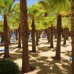 Photo of Playacanela Hotel