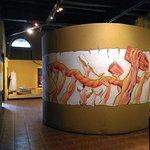 صورة فوتوغرافية لـ Museu do Cirio de Nazare