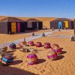 camel trek in desert