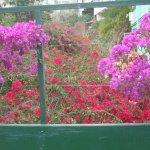 Foto de Parque Vacacional Eden