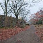 Photo of Oka Castle Ruins