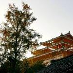 Longji (Dragon's Backbone) Rice Terraces at sunrise