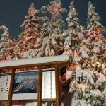Photo of Grouse Mountain