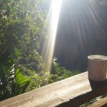 Enjoying Morning Coffee Overlooking the River and Jungle