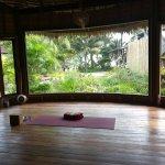 Island Yoga Yoga Room