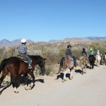 Kids program afternoon trail ride