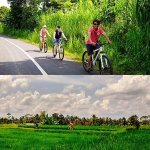 Cycling activities