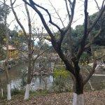 Foto de Wenzhou Zoo