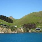 صورة فوتوغرافية لـ Marlborough Sounds