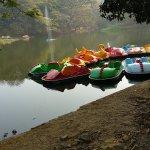 Sanjay Gandhi National Park Foto