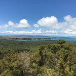 View walking up Rangitoto