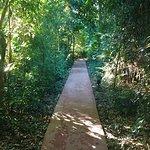 Photo of Cabanas Luces de la Selva