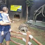 Photo of Batu Secret Zoo (Jawa Timur Park 2)