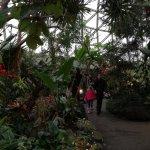 Bloedel Conservatory의 사진