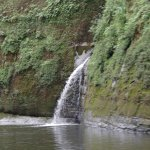 Mini waterfall seen on the Whanganui River Adventures jet boat ride.