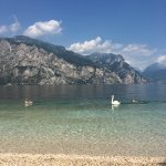 Photo de Camping Alpino