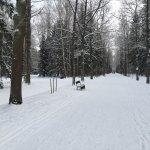 Pawlowsk-Palast und Parkanlage Foto
