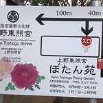 The peony exhibition is now on (January 2018)