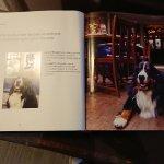 Famous pub dog Max
