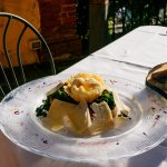 Poached Egg on Kale