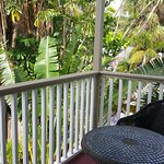 Sabal Palm House Bed and Breakfast Inn Picture