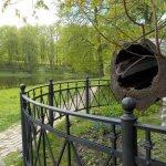 Парк и пруд
