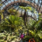 Photo of Botanical Building and Lily Pond
