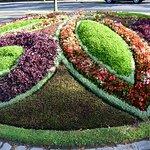 Photo of Jardin Botanique Lausanne