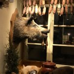 Photo of The Hairy Pig Deli
