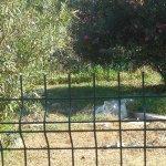 Foto de LABRANDA Ephesus Princess
