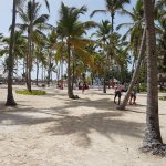 Foto de Catalonia Bavaro Beach, Casino & Golf Resort