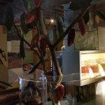 Photo of Choco-Story - The Chocolate Museum