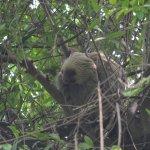 Foto de Centro Natural Punta Culebra