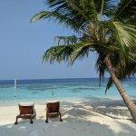 Bilde fra Bandos Maldives