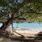 Photo de Bandos Maldives