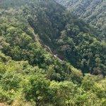 Photo of Pura Vida Gardens and Waterfalls