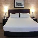 芝加哥奧黑爾/羅斯蒙特假日套房酒店照片