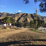 Rancho Oso RV & Camping Resort Picture