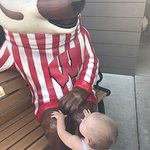 Bucky and the other badgers are always a hit.