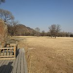 Shimadi hunting ground