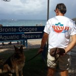 Hanalei Gourmet has spread its reach to Coogee Beach, Sydney
